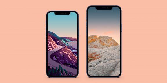 Новые обои из iOS 14.2 уже доступны для всех устройств