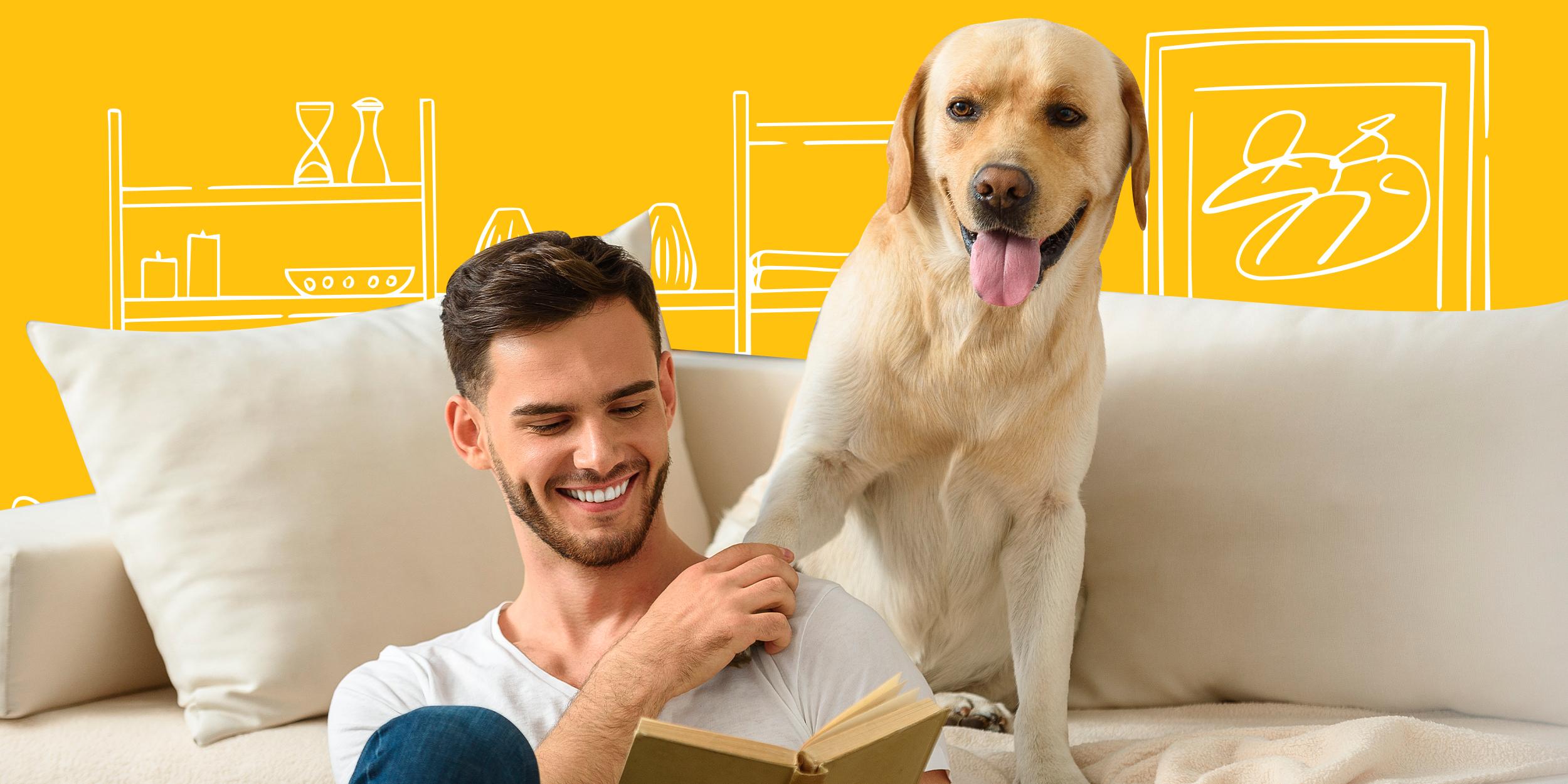 7 удивительных фактов о том, как собаки влияют на своих владельцев